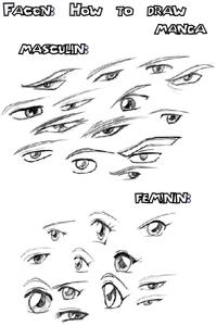 eye_masculin_eye_f_minin