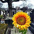 Montmartre mars 2012 008