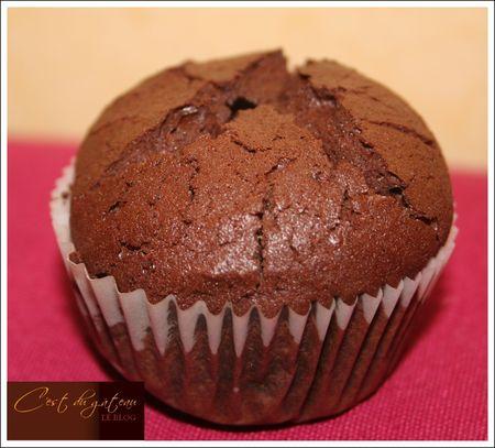 muffin_choco