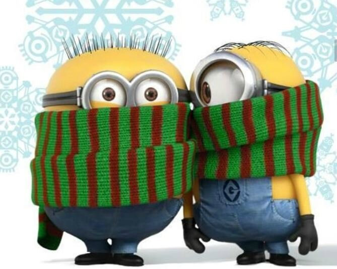 minions froid